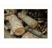 stack of firewood Art Print