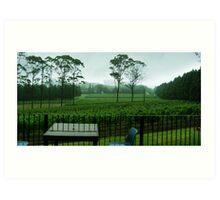 Marsden Estate Winery Art Print