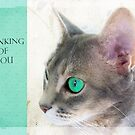 """Cat Eye """"Thinking of You"""" by Susan Werby"""