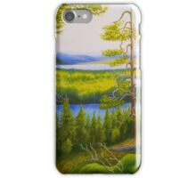 Arctic Wilderness iPhone Case/Skin