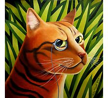 Rousseaus' Cat Photographic Print