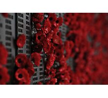 Lest We Forget... Photographic Print