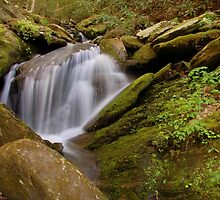 spring falls by dc witmer