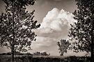Prairie Clouds - B&W by KBritt