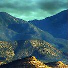 Santa Fe Foothills by Kathleen Stephens