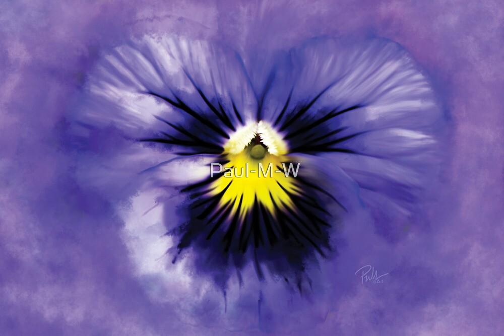 Purple Heart by Paul-M-W