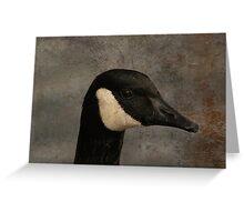 """ Wildlife of the lake "" Greeting Card"