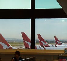 Qantas Line Up by amkaberry