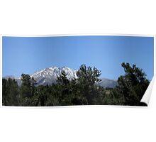 White Mountain View Poster