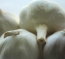 Garlic Bulbs by Stephen Thomas