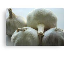 Garlic Bulbs Canvas Print