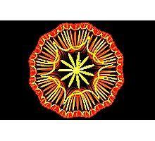 Wheel of Yarn Photographic Print