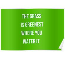 The grass is greenest where you water it Poster