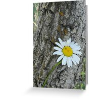 Attachment Greeting Card