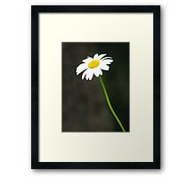Margarita Poeme Framed Print