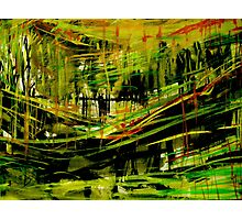 deep valley forest.... wall sketches Photographic Print