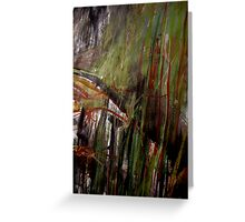forest along the ridge..... Greeting Card