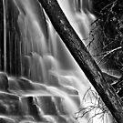 Lower Lilydale Falls by Husky