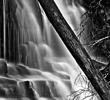 Lower Lilydale Falls by Husky