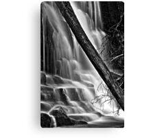 Lower Lilydale Falls Canvas Print