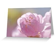 soft silver linings Greeting Card