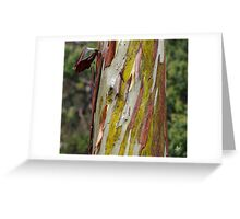 Eucalyptus bark Greeting Card