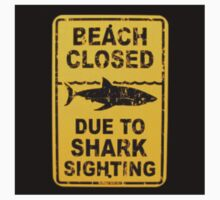 Beach Closed Due To Shark Sighting ! Danger by stude