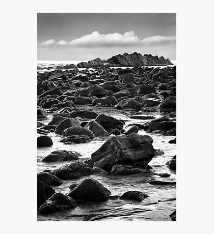Rock Colony Photographic Print