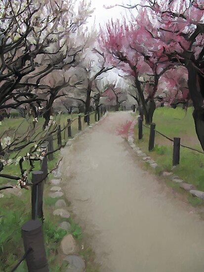 Osaka Blossoms by Lauren Hills