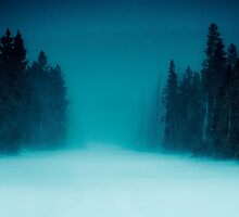 Yellowstone: into the unknown by Nick  Taylor
