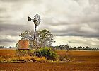 Postcard from Narromine NSW #1 by Rosalie Dale