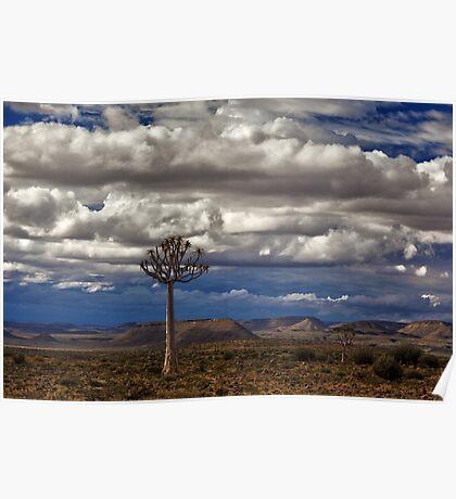 African Wilderness Poster