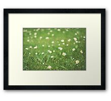 Day 324 - 29th May 2012 Framed Print