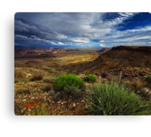 Afternoon in the Canyon Canvas Print