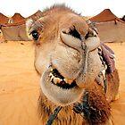 Smile!  Sahara Morocco by Debbie Pinard