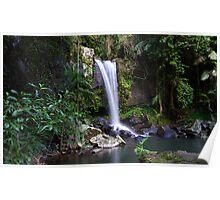Curtis Falls - Mount Tamborine Poster