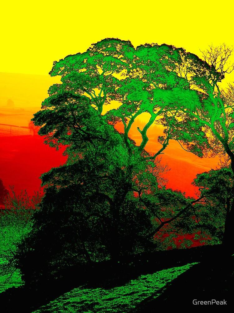 Sunrise In The Peaks by Paul  Green