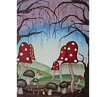 Mystical Mushrooms Photographic Print