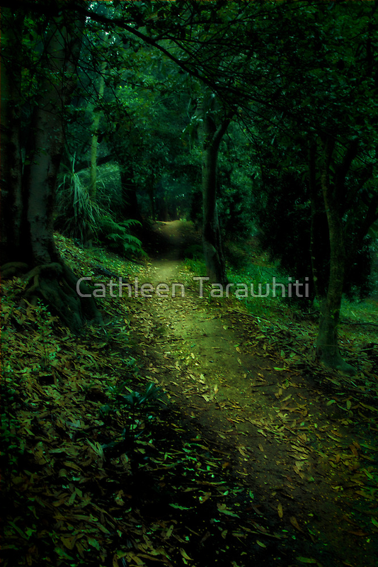 Enchanted Forest by Cathleen Tarawhiti