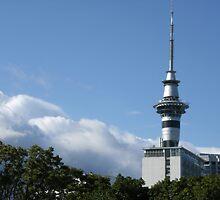 Auckland Skyline by cadellin