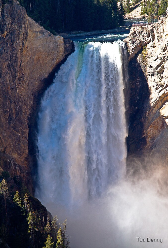 Canyon Falls in Yellowstone National Park by Tim Denny