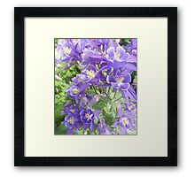 Come Softly... Framed Print