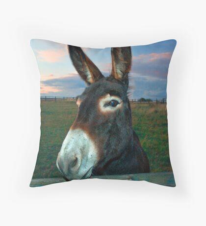 Donkey Business Throw Pillow