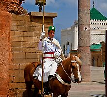 Morocco. Rabat. Guard at the Mausoleum of Mohammed V. by vadim19