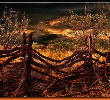 The Fence by Richard  Gerhard