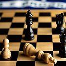 Checkmate by Manuel Gonçalves