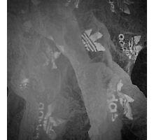 X-Ray Adidas  Photographic Print