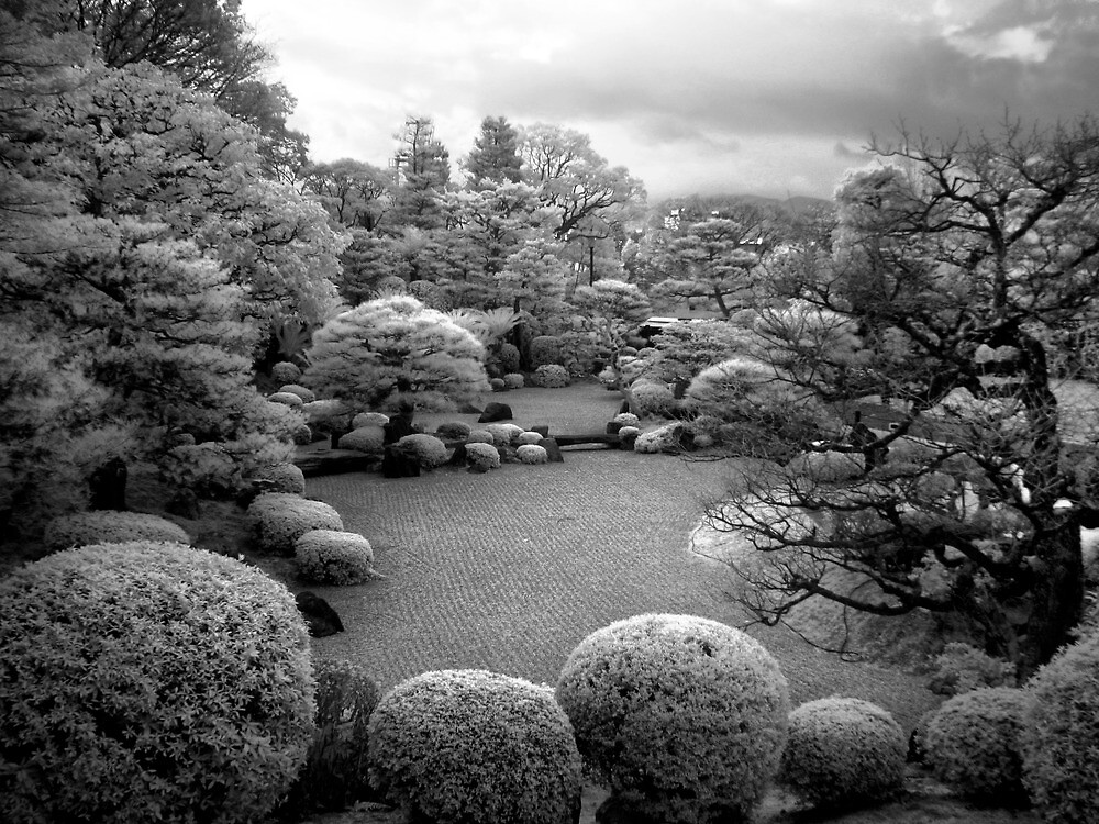 Stone Garden (Infrared) by Richard Mason
