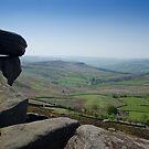 Peak View by Mark Baldwyn