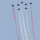 The Red Arrows 2 by Hovis
